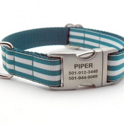 Cabana Stripe Dog Collar with Laser Engraved Personalized Buckle - TEAL