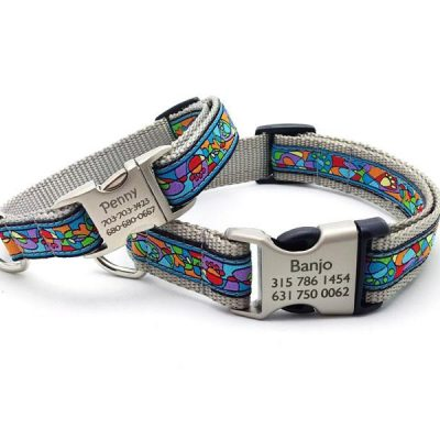 Van Gogh Paws Dog Collar with Personalized Buckle